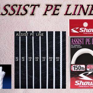 Shout PE Assist 89-AP