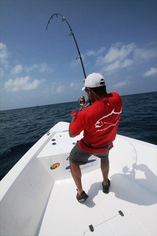 Saltywater Tackle Race Point 300