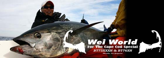 Hot's Wei World Casting Rods