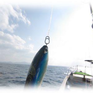 Studio Ocean Mark Ocean Snap with BB Swivel